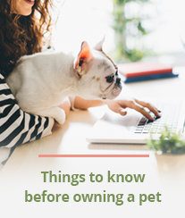 Things to know before owning a pet