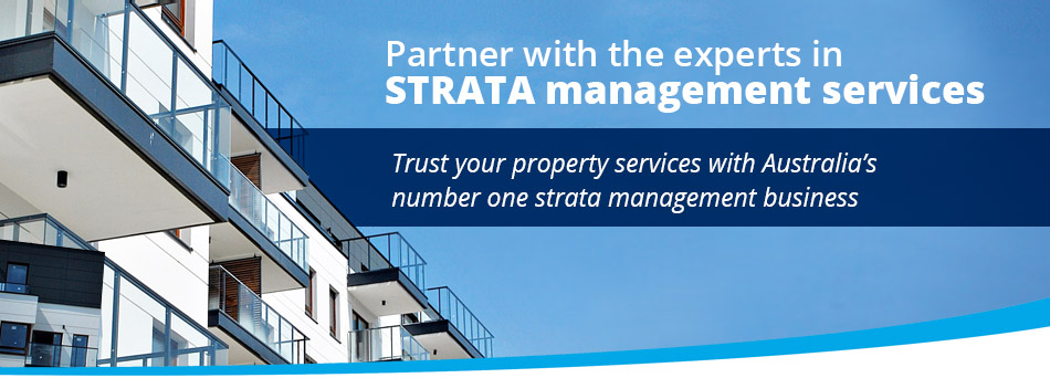 Professional strata management from experts you can trust header image