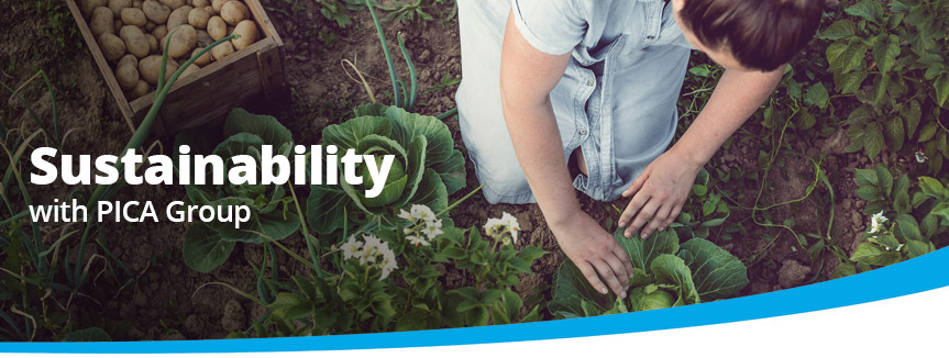 Sustainability with PICA Group