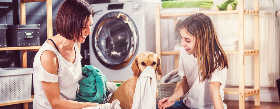 Breaching strata by laws on laundry can leave you high and dry Article header image