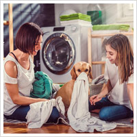 inside or outside laundry by-laws