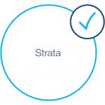 Strata tick icon