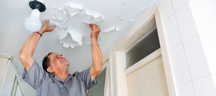Dos and don'ts for renovations in an owners corporation property header image